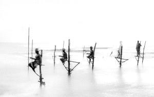 Temasek Photo Circuit Merit Award - Liping Li (China) <br /> Fishing