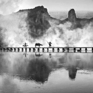 Temasek Photo Circuit Merit Award - Weimeng Shi (China) <br /> Work At Sunrise
