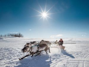 Temasek Photo Circuit Merit Award - Alexey Suloev (Russian Federation)  Racing On The Reindeer-Yamal