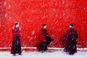 Temasek Photo Circuit Merit Award - Baoyi Huang (China)  Snowing