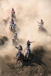 PSA HM Ribbons - Tracy Shuxi Feng (USA)  Desperate Horses