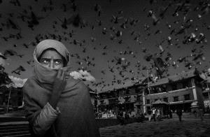 Temasek Photo Circuit Merit Award - Yongan Gan (China) <br /> Yearn