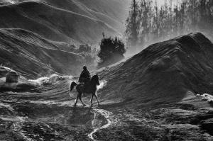 Temasek Photo Circuit Merit Award - Ee-Sin Tan (Singapore) <br /> Horse Ride Solo