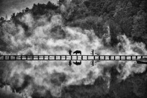 APAS Gold Medal - Pui-Chung Yee (Singapore)  Lishui Cowherd Cross Bridge
