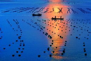 PhotoVivo Honor Mention - Tong Hu (China) <br /> Sail Ing  Home At Sundown