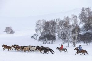 TPC Merit Award - Jianjun Lv (China) <br /> Horse Rider In The Snow
