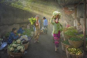 PhotoVivo Silver Medal - Arnaldo Paulo Che (Hong Kong)  Green Market