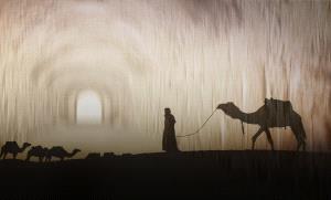 PhotoVivo Honor Mention - Weijing Yang (China)  Return