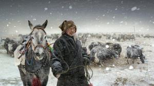 TPC Bronze Medal - Haiyan Wu (China) <br /> The Snow Was Mugui