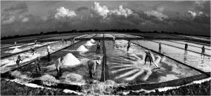 TPC Merit Award - Lê Duc Toại (Vietnam) <br /> Dance On Salt Fields